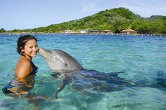 Dolphin Encounter - Anthony's Key Resort - Roatan - Honduras