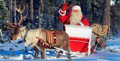 Kuvahaun tulos haulle suomalainen joulu Finland, Camel, Christmas, Animals, Xmas, Animales, Animaux, Camels, Navidad