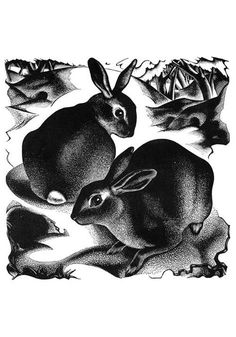 """Hares in the snow by Agnes Miller-Parker. (""""Through the Woods"""", 1936)."""