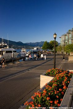 Walkway and bike path along waterfront in downtown Vancouver, Vancouver, British Columbia, Canada