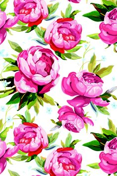 iPhone Wallpaper peonies Pfingstrosen