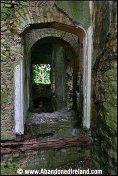 Abandoned Ireland Mount Talbot House, Co. British Isles, Family History, Abandoned, Celtic, Landscapes, Mirror, Places, House, Beauty