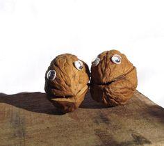 a walnut is a faithful friend