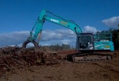 Clear tree recycling offers the best land clearing service. We have the top quality equipment for tree lopping. We provide the tree lopping service in Brisbane and land clearing service in QLD and sunshine coast.
