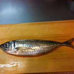 May 15th dinner. horse mackerel. It's called the AJI in japan.