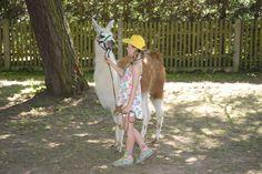 Zweiter Tag vom Buchenhainer Waldfest 19. Juli 2014 - Feiern im Biergarten in München Süd - Vor allem die Kinder haben sich über ein buntes Rahmenprogramm mit Hüpfburg, Lamas und Clown Bobbie gefreut.