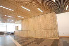 Google Image Result for http://www.finishlinereps.com/gallery/images/wood_ceilings/DSC_0077.jpg