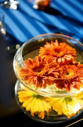 two fishbowls stacked with floating flowers in each?