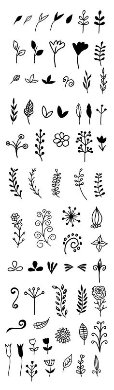 Vector Hand-drawn Floral Kit