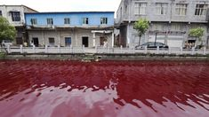 People in Wenzhou,in China, saw their local river, turned blood-red, overnight. What caused this mysterious phenomenon? Inspectors from the Wenzhou… Apocalypse, Blood Red Color, Red River, Kerala, Around The Worlds, Mansions, House Styles, July 25, Lakes