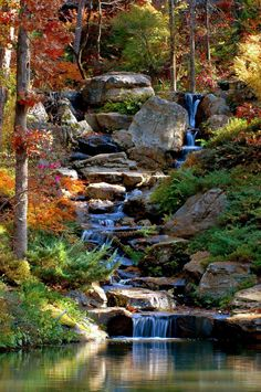 Koi Pond Cascade in autumn - Japanese Garden Design Backyard Water Feature, Ponds Backyard, Large Backyard, Koi Ponds, Backyard Waterfalls, Ponds With Waterfalls, Garden Ponds, Modern Backyard, Backyard Patio