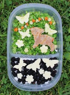 Sheep / Lamb themed lunch - rice, broccoli, carrot, zucchini with cottage cheese, blackberries and white chocolate