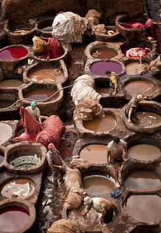 Colouring process at the tanneries  in the Fez Medina, Morocco (by Kimberly Jansen)
