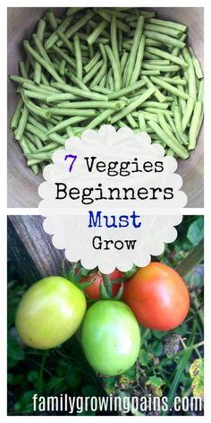 7 Veggies Beginning Gardeners Should Grow » Family Growing Pains