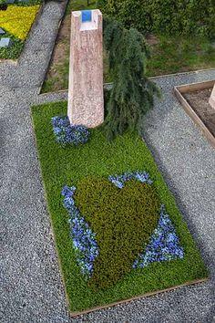 Die 20 Besten Bilder Von Grabbepflanzung Ground Cover Plants