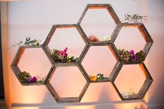 diy-etagere-alveole-ruche-design