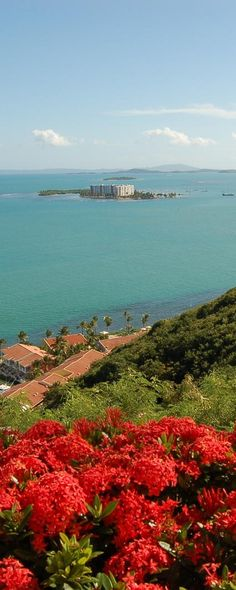 Este es mi pueblo q me vio nacer ' Fajardo '' y esa Islita es '' Isleta marina , la otra es '' Isla de ramos y a lo lejos se ven unas monta~as esa es mi Isla de Vieques mi isla querida DONE ME CRIE YO !