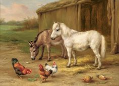 A Donkey, White Pony & Chickens by a Barn...by Edgar Hunt