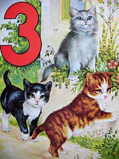 three kittens | Flickr - Photo Sharing! share cute things at www.sharecute.com