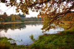 Wandelen en fietsen in het Drents Friese Wold. Prachtg gebied met vennetjes, eiken- en beukenbos, heide. Ideaal voor in de zomer maar zeker ook in de herfst!