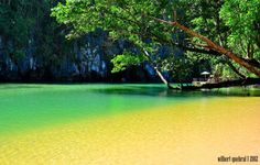 This also started all =) - Puerto Princesa, Palawan