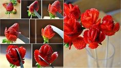 Lovely and Romantic Strawberry Roses | www.ladylifehacks.com