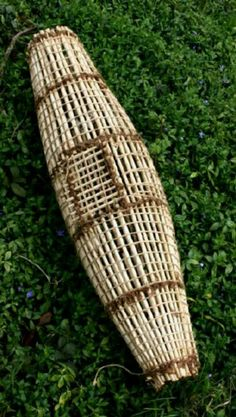 Fishing traps on pinterest fish fishing and hand made for Diy fish trap