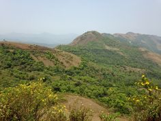 Roaming in the Western Ghats (6/6)