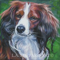 "A Nederlandse Kooikerhondje dog art portrait print of an LA Shepard painting 12x12"". Here's a wonderful tribute to your best friend and favorite breed- the Kooiker ! from an original painting by L.A.Shepard, whose unique, beautiful work has been collected around the world. Your print will be individually signed under the image by the artist, and initialed on the image. Copyright text is for display purposes only and will not appear on your artwork. The image is12x12 inches and is printed…"