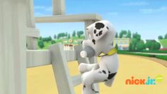 Click for the latest compilation of the funniest Marshall moments from PAW Patrol!