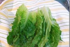How to Dry and Store Lettuce no salad spinner or fancy bags needed Healthy Foods To Eat, Healthy Tips, Healthy Eating, Healthy Recipes, Delicious Recipes, Cool Kitchen Gadgets, Cool Kitchens, Kitchen Tips, Growing Lettuce