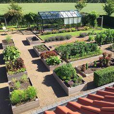 The garden in mid July - Haven midt i juli #food