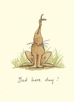 M30 BAD HARE DAY - A Two Bad Mice card by Anita Jeram