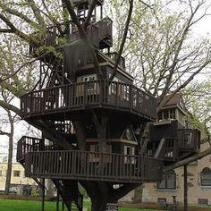 How To Build A Treehouse ? This Tree House Design Ideas For Adult and Kids, Simple and easy. can also be used as a place (to live in), Amazing Tiny treehouse kids, Architecture Modern Luxury treehouse interior cozy Backyard Small treehouse masters Beautiful Tree Houses, Cool Tree Houses, Beautiful Homes, House Beautiful, Beautiful Beautiful, Saint Louis Park, St Louis, Building A Treehouse, Treehouse Ideas