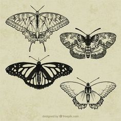butterfly vintage - Pesquisa Google