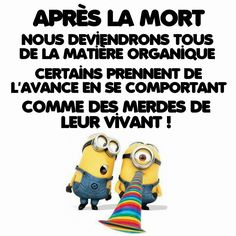 Citation Citation Minion, Minions, Some Fun, Are You The One, Improve Yourself, Haha, Funny Quotes, At Least, Humor