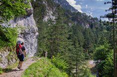 Zwischen Hirschwang und Kaiserbrunn führt der 1. Wiener Wasserleitungsweg. Auf rund 3,5km wanderst du durch die beeindruckende Landschaft des Höllentals. Mount Rainier, Austria, Wanderlust, Mountains, Outdoor, Nature, Travel, Holidays, Road Trip Destinations