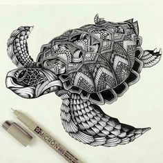 This might work for my cover-up 🐉🐢 Turtle zentangle pattern :D Zentangle Drawings, Zentangle Patterns, Zentangles, Zentangle Animal, Mandala Tattoo, Mandala Art, Tattoo Maori, Thai Tattoo, Maori Art