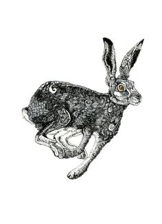 Hare Print Hare illustration by Chasing the Crayon