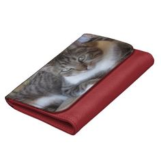 Handsome Tabby Wallet