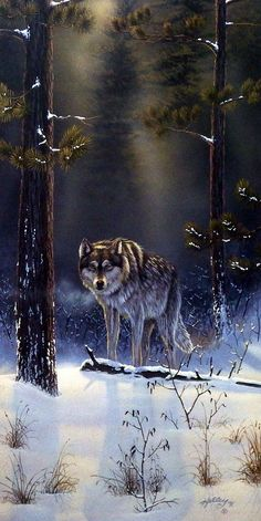 """A light beams down on the lone wolf who is making his way from the forest. This print is signed and is available unframed in size 10.5""""x21"""""""