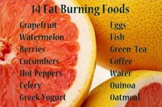 fat burning foods you won't want to leave out of your diet - TIPS to rid  yourself of belly fat!