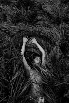 Photograph by Lisa Wassmann