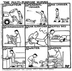multi purpose human