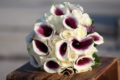 Picasso Calla Lilly & White Roses www.seedfloral.com