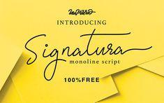 signatura-monoline-script