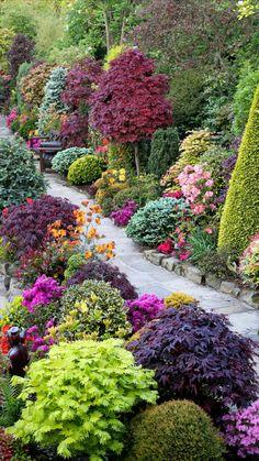 Garden Yard Ideas, Garden Paths, Garden Projects, Garden Art, Garden Design, Backyard Ideas, Border Garden, Garden Roses, Farmhouse Landscaping