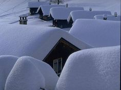 snow covered roofs