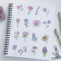 """1,144 mentions J'aime, 22 commentaires - Graphic Designer & Letterer (@thewildhippies) sur Instagram : """"Happy hump day! . These gorgeous little florals are all from Peggy's Botanical Line Drawing Book…"""""""
