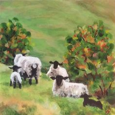 "Daily Paintworks - ""sheep in meadow"" - Original Fine Art for Sale - © wendy black"